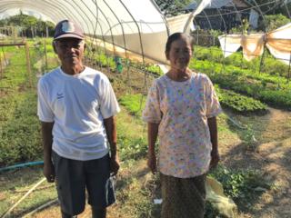 無農薬栽培の花を生かして、ラオスの農家さんの力になりたい!