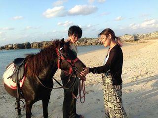 鹿児島だけに生息する『トカラ馬』と触れ合える牧場を創ります!