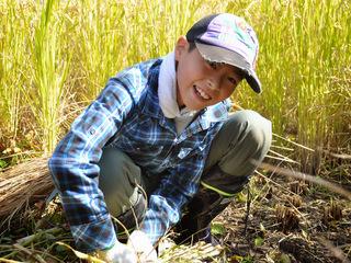 都市の農地を活かして子ども達が自然で遊び、学ぶ場を創りたい!