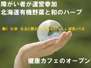 障がい者が運営参加、北海道有機野菜と和ハーブのカフェオープン