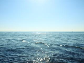 大都会・東京に隣接する海の新たな一面を切り出す〜TOKYO BAY〜