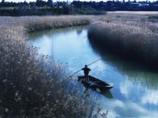 伝統的漁法の伝承!シジミ貝の復活と三枚網漁法での生物調査実施