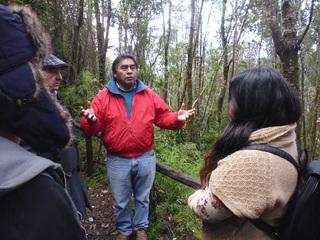 チリ先住民の森と伝統を守るため自生する海藻から薬を作りたい