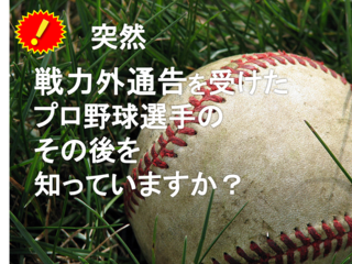 プロ野球界を離れる方々の新たな 人生のスタートを支えたい!