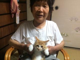 介護認定を受け、生活が不自由になった祖母の為に住宅