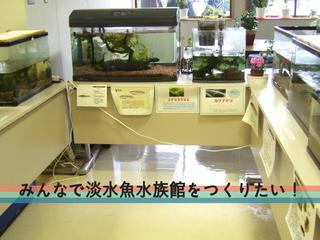九州湯布院に、淡水魚の魅力が伝わる「国産淡水魚水族館」を開館
