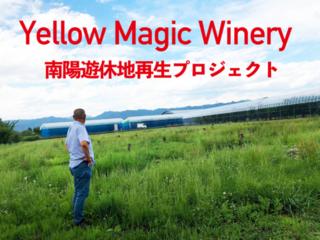 南陽市の遊休地を再生!葡萄名産地で本格ワイン作りを目指す!