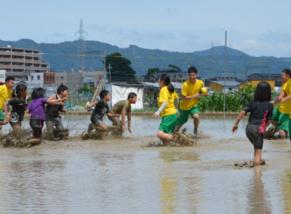京都向島たんぼラグビー開催!農業と地域をつなぐ新たな感動体験