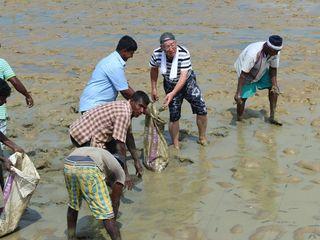 スリランカの未来のため エビ養殖場の水質改善プロジェクト発足!