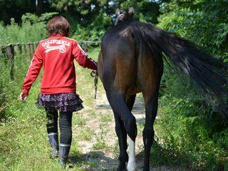 馬たちが安心して過ごせる場所を。ブレーヴステイブルの再起へ。
