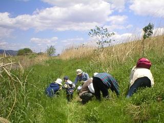 「地域のエコイベント」をきっかけに、環境課題の解決につなげたい