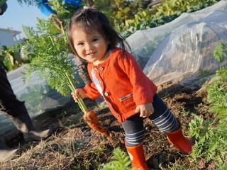 畑は農業を魅せる場所!子どもが安心して過ごせる農園へ育てたい