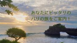 ふるさとバリ島でツアー会社を始めるための車を購入したい!