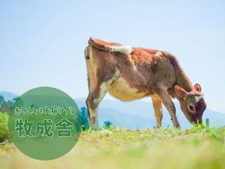 命の誕生を祝福したい。雄ジャージー牛を飼育する牛舎の増築を。