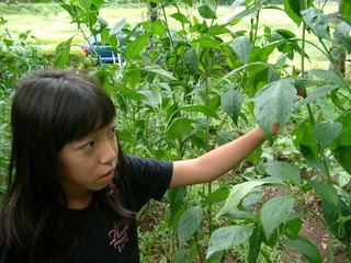 『自己肯定感』を育て直す情報誌『Roots』を立ち上げたい!