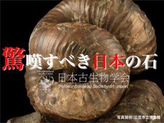 日本代表の古生物-ニッポニテス-3D化PJ 彼らの魅力を全世界へ!
