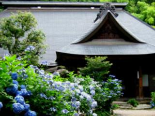 創建1604年「箱根あじさい寺」参道を整備し、多くの方とご縁を。