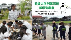 持続可能な未来へ。愛媛大学附属高校、循環型農業への挑戦!