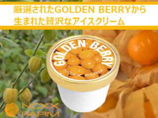 更なる美味しさを求めて。GOLDENBERRYアイスの商品化