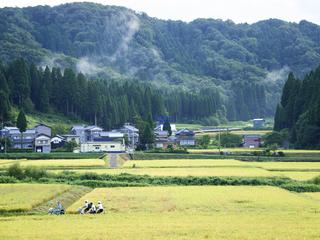 池田町に外国人が訪れる環境を!ガイドツアーサイトを作りたい!