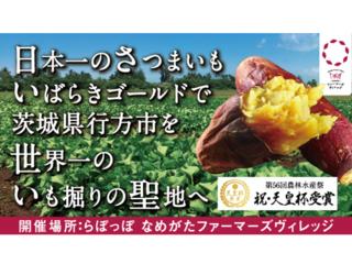 日本一のさつまいもで茨城県行方市を世界一のいも掘りの聖地へ