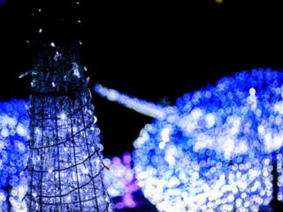 徳島県美馬市の冬を彩る20万球のイルミネーション開催‼