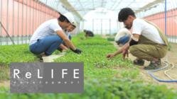 福井県・あわら市で自産自消の農業体験を。ReLIFEプロジェクト!