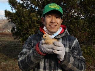 安全で美味しい北海道産飼料100%の平飼自然卵をつくりたい!