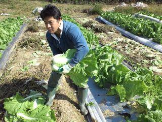 愛媛の耕作放棄地を再生しおいしいオーガニック野菜を育てたい!