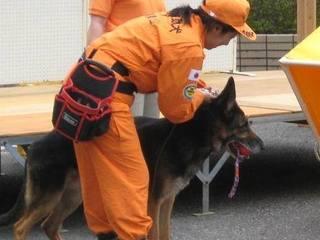 災害救助犬とハンドラーを災害現場へ派遣する為の車両を購入したい!