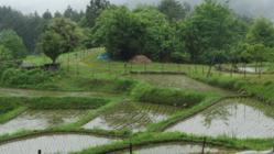 クレイシ棚田を自然体験公園として皆さんに来てもらいたい!