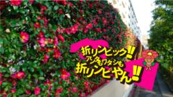 みんなで作る住之江区花さざんかの折紙文字で世界記録に挑戦!