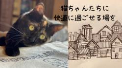 ぼくらのてが保護猫のための場をつくる。小さな猫町プロジェクト