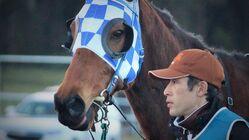 -馬主のかたち-競走馬たちの未来をつくる、馬主側からできること