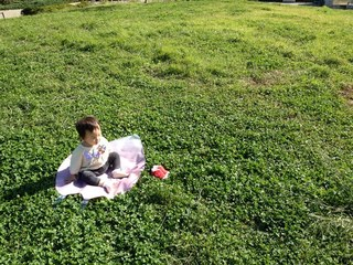 桜の花びら型レジャーシート1000部を制作し東北地方に届けたい!