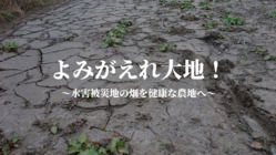 台風被害から復興へ。水没して使えなくなった農地を復活させたい