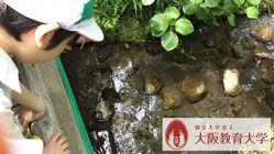 ほたる池復活プロジェクト~附属平野小学校121期生の挑戦~