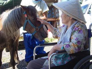 牧場内に来場者が落ち着いて休むことができる休憩所を作りたい!