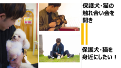保護犬保護猫の触れ合い会を開き、保護犬・猫を身近にしたい!