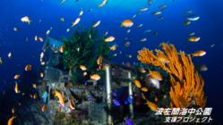 世界唯一の海底神社を後世に残したい。波左間支援プロジェクト