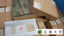 原爆被爆者の記録を後世へ:標本データベース化プロジェクト