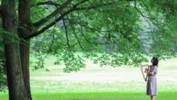 国産材ハープのパンフレットを作り、森の再生に貢献したい