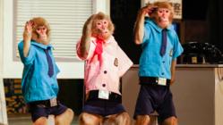 コロナ緊急支援:お猿さんと芸人を守り、日光さる軍団存続へ。