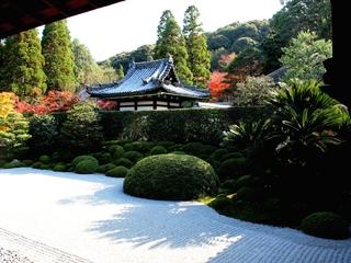 存続の危機にある京都一休寺の枯山水庭園を希望の光で照らしたい