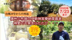 神宮奉納した信州小布施栗農家、台風19号被災から再起目指す!