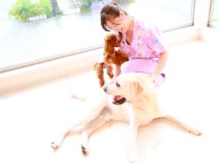 ペットのための鍼灸ケア法を自宅で学べるWEBスクールを作りたい