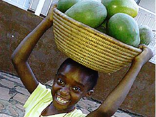 農業学校を建設し1万人のウガンダ人の自立支援を!