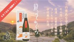 佐渡島の棚田の風景を守る日本酒を。老舗蔵の伝統と挑戦。