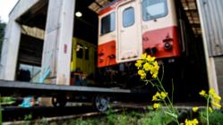 いすみ鉄道に愛を取り戻せ!写真による文化拠点構築プロジェクト