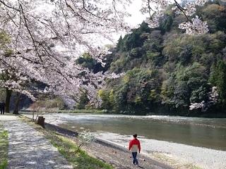 久慈川の川原で川と緑と音楽をゆっくり楽しむ音楽会を開催したい